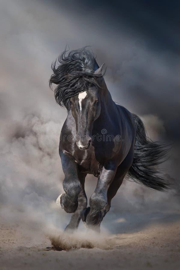 Черная лошадь проекта на облаках пыли стоковое изображение