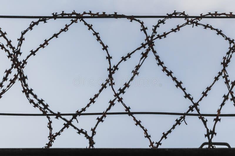 Черный затрапезный колючий провод металла на проводах на загородке против голубого неба стоковые изображения