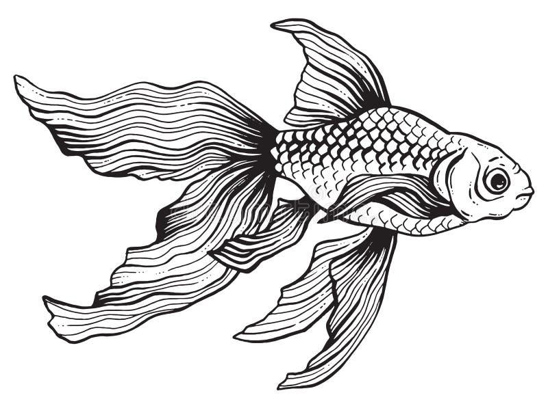 Черно-белый чертеж ручки и чернил рыбки иллюстрация штока