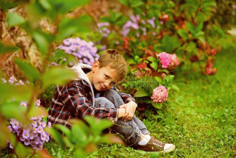 Что, который нужно предпологать Небольшой мальчик ослабляет в саде Небольшой мальчик надеясь что-то Живите в очень душе ожидания  стоковые фото
