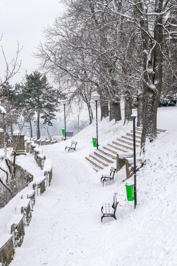 Холм Cetatuia во время зимы в cluj-Napoca, Румынии стоковое фото