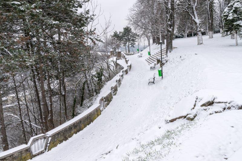 Холм Cetatuia во время зимы в cluj-Napoca, Румынии стоковые фотографии rf