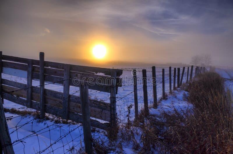 Холодные штормы Альберта Канада снега захода солнца прерии зимы стоковые фотографии rf