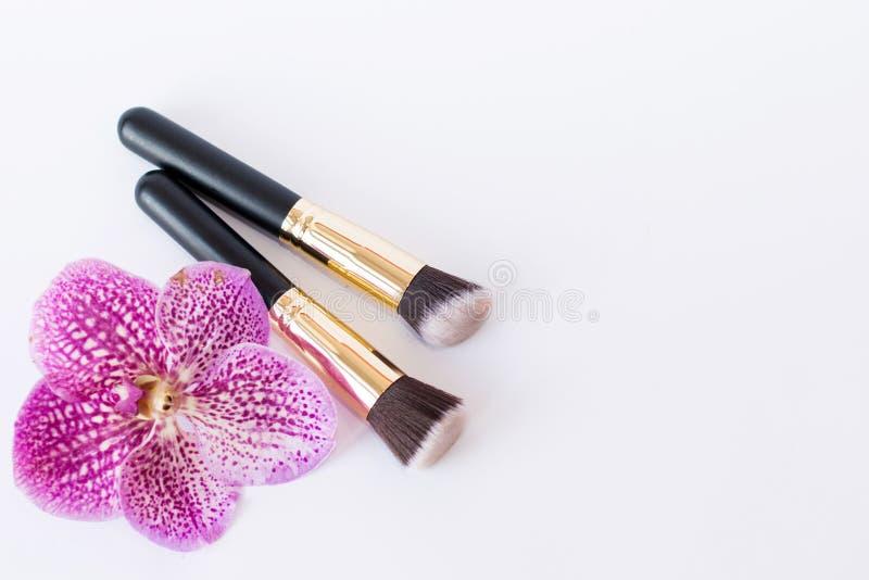 Щетки цвета, косметики макияжа на стороне на светлой предпосылке стоковые фото
