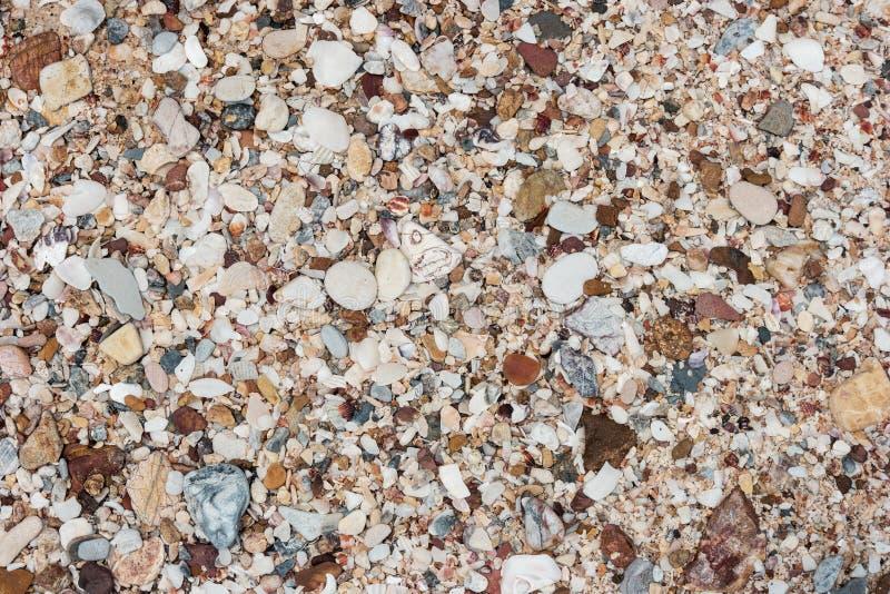 Различные покрашенные камешки или камни пляжа на пляже для предпосылки природы стоковое изображение