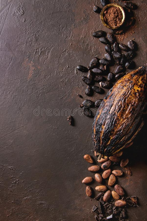 Разнообразие бобов кака стоковое фото