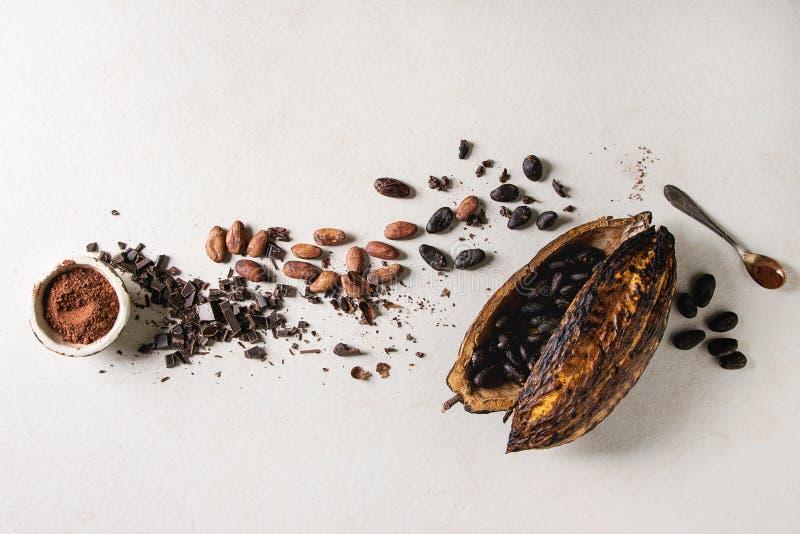 Разнообразие бобов кака стоковые фотографии rf
