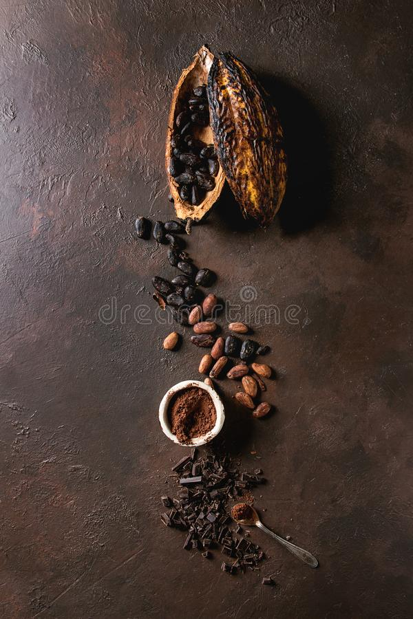 Разнообразие бобов кака стоковое изображение