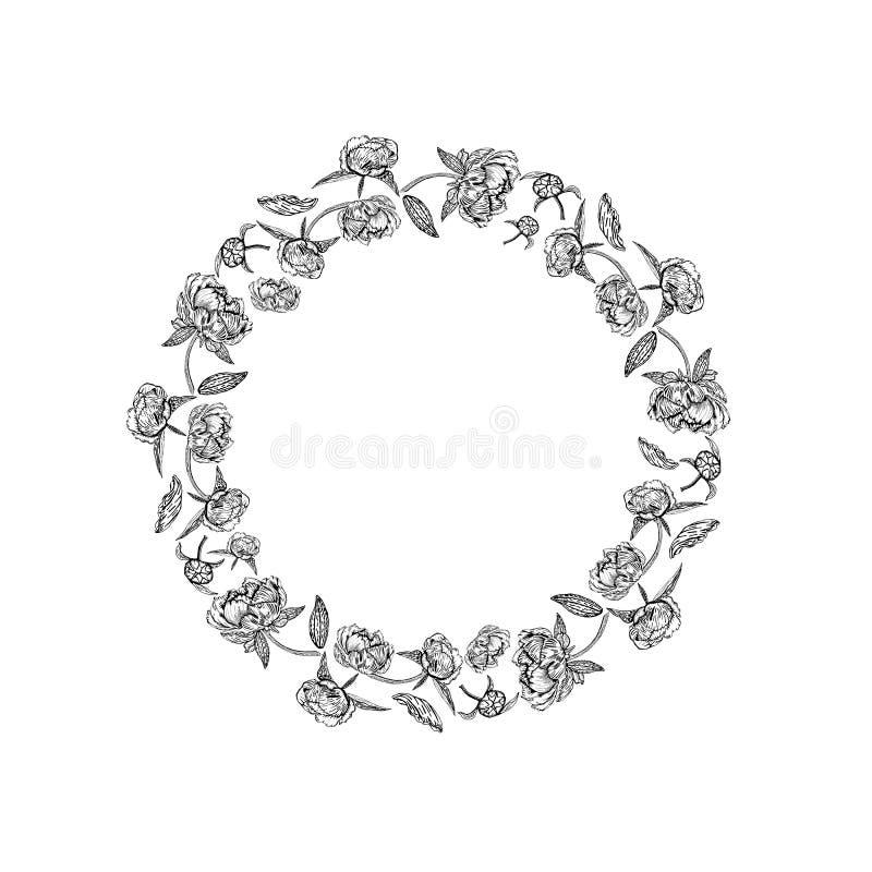 Рамка красивого пиона круглая - вектор в черно-белом иллюстрация штока