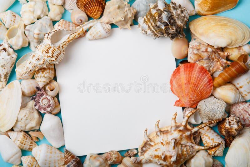 Рамка от seashells на голубой предпосылке стоковая фотография rf