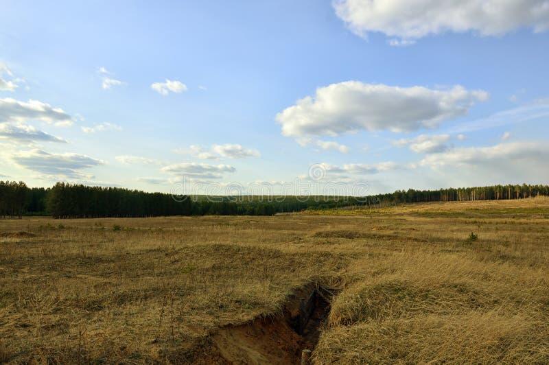 Раны земли Выкопанные канавы ландшафта фокуса поля дня облаков сини небо выставки заводов движения должного польностью зеленого м стоковая фотография rf