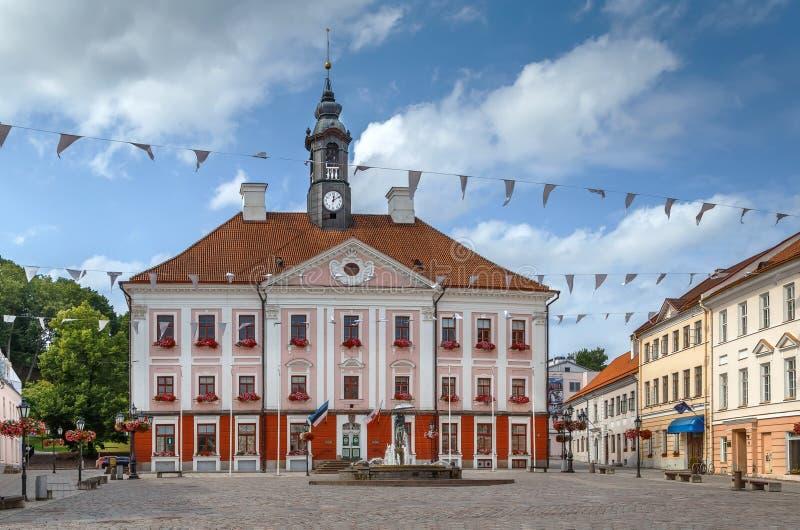 Ратуша Tartu, Эстонии стоковое фото rf