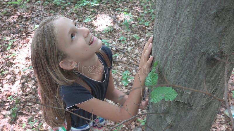 Ребенок в лесе, ребенк играя в природе, девушка в приключении на открытом воздухе за деревом стоковые изображения rf