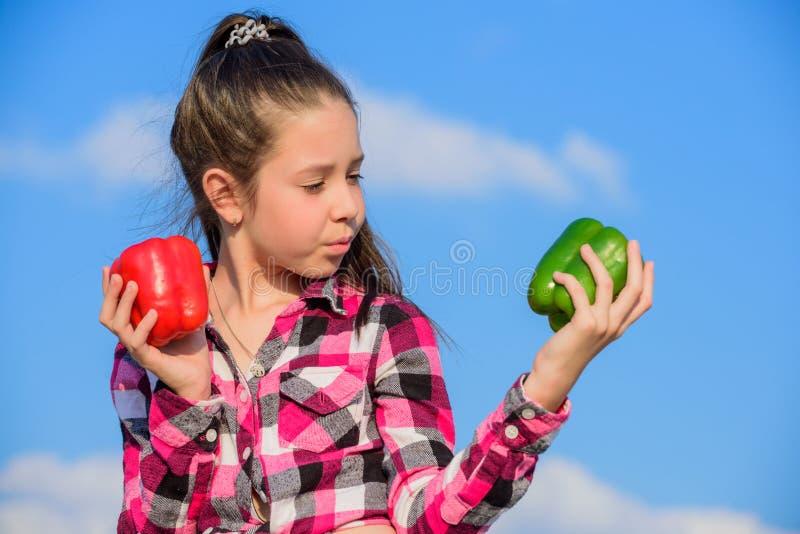 Ребенок представляя виды перца Сбора падения сбора перца владением ребенк овощи зрелого доморощенные Вегетарианская принципиальна стоковые изображения