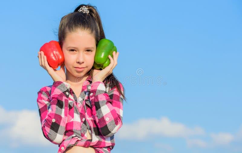 Ребенок представляя виды перца Овощи сбора падения доморощенные Который перец вы скомплектовал бы Вегетарианская принципиальная с стоковые фотографии rf