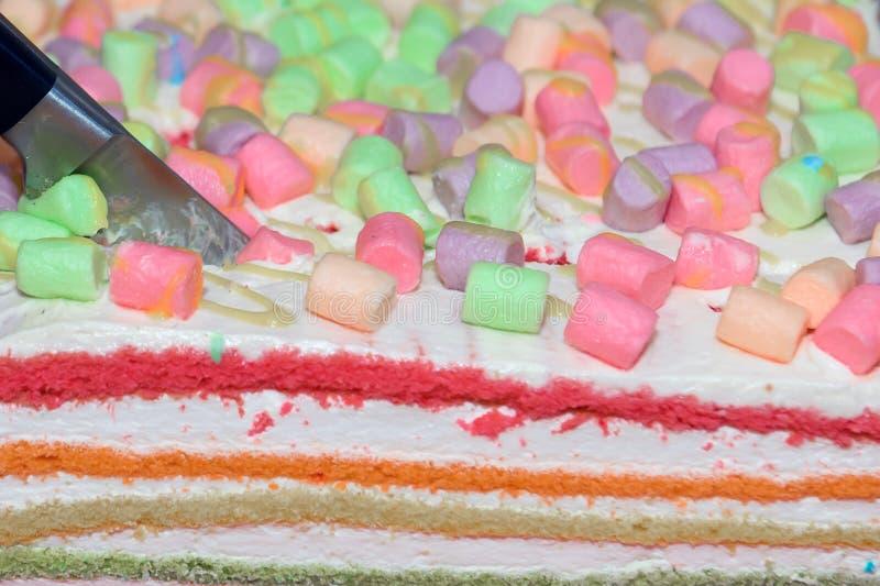 Резать печенья торта наслоен стоковые фотографии rf