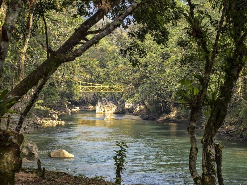 Река Cahabon, формирует многочисленные каскады, champey Semuc, Гватемалу стоковое изображение rf