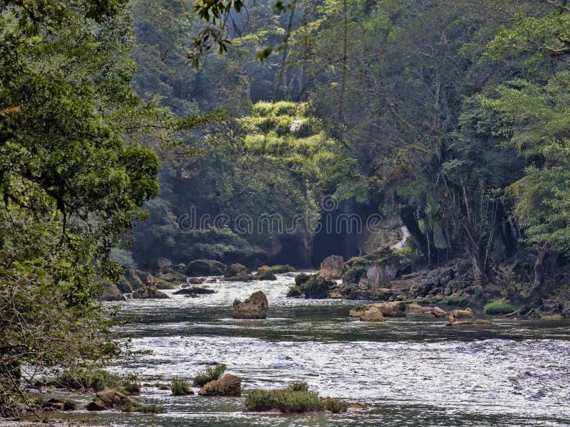 Река Cahabon, формирует многочисленные каскады, champey Semuc, Гватемалу стоковая фотография rf
