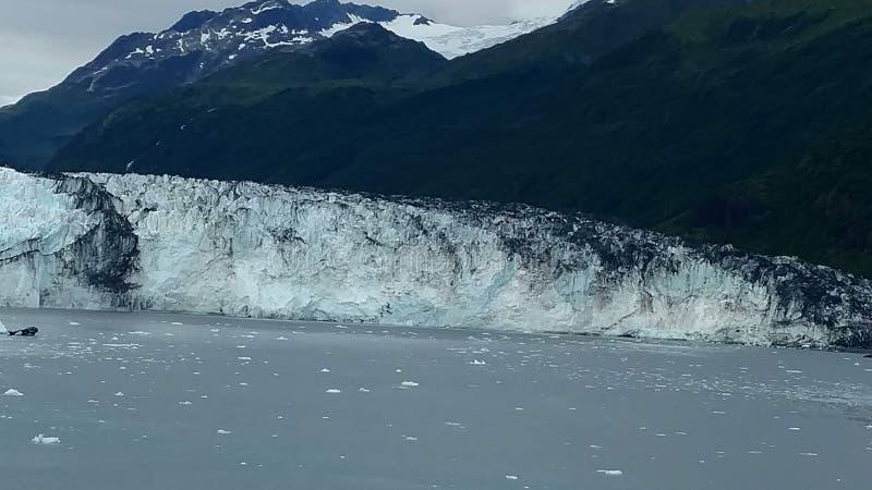 Рука Аляски Гарвард фьорда коллежа ледника Гарвард с горными пиками покрытыми снегом и спокойный Тихий океан с айсбергами от dist стоковое изображение