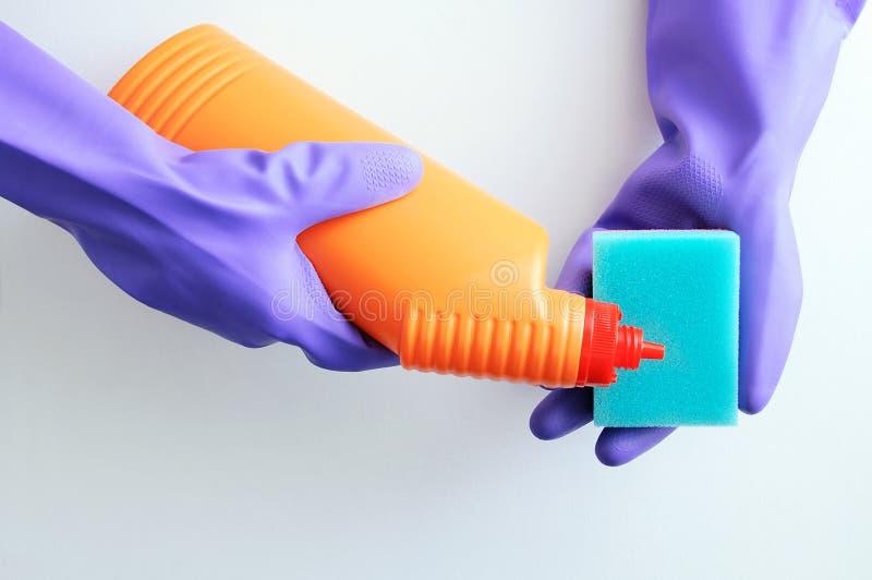 Руки в защитной перчатке Химикаты домочадца и владения губки в их руках стоковые фотографии rf