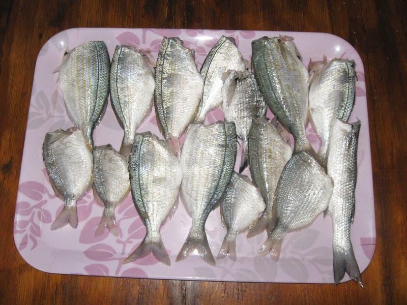 рыбы подготавливают для печь стоковое фото rf