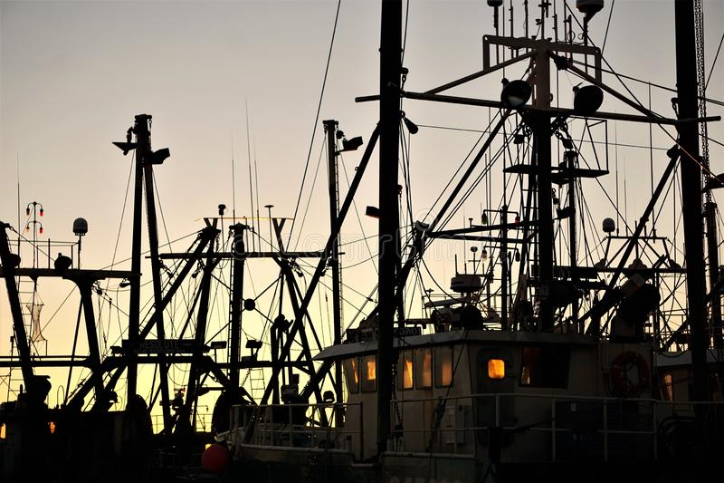 Рыбопромысловый флот New Bedford силуэта на зоре стоковая фотография