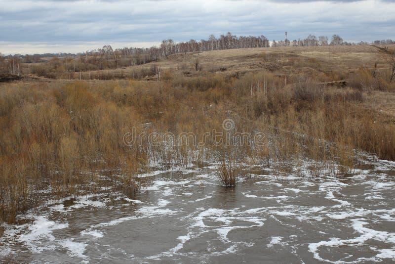Ñ  Ñ€ÑƒÑ  Ñ  wiosna topi wodę zalewał łąkowych wzgórzy naturalną krajobrazową powódź obraz stock
