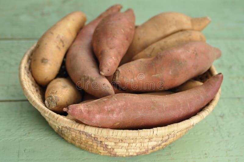 Ñames y patatas dulces imágenes de archivo libres de regalías