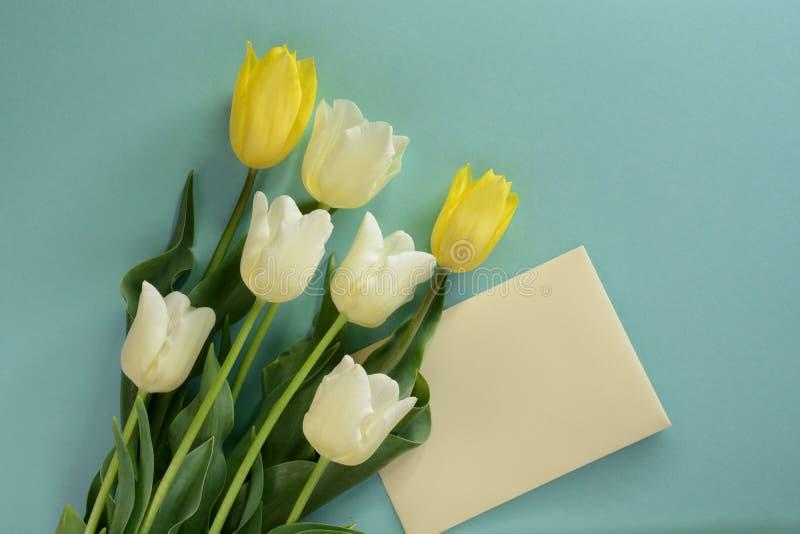 Żółci i biali tulipany z kopertą na lekkim turkusowym tle obraz royalty free