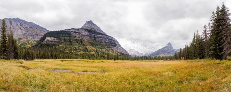 Żółta łąka pod cytadeli górą - lodowa park narodowy zdjęcie stock