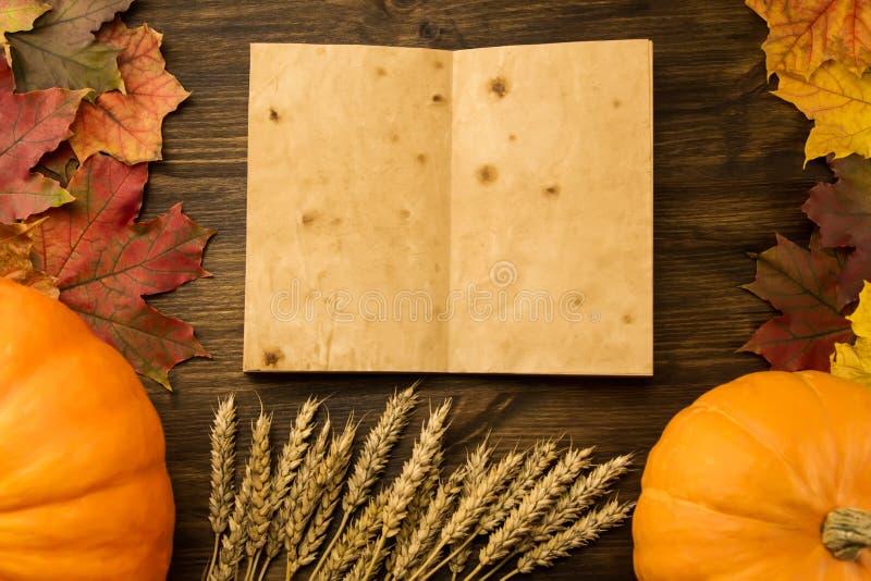 Żółta dojrzała bania, liście klonowi, czerwoni jabłka, banatka na drewnianym tle Dziękczynienie, jesień, domowej roboty zdjęcia stock