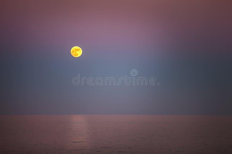 Żółta księżyc zdjęcie royalty free