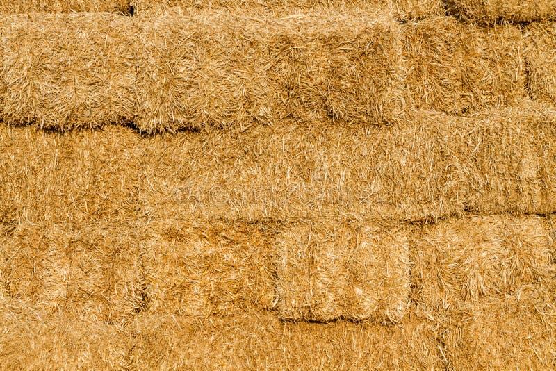 Download Żółta Słomiana Bela W Lecie Zdjęcie Stock - Obraz złożonej z farm, tło: 57655936