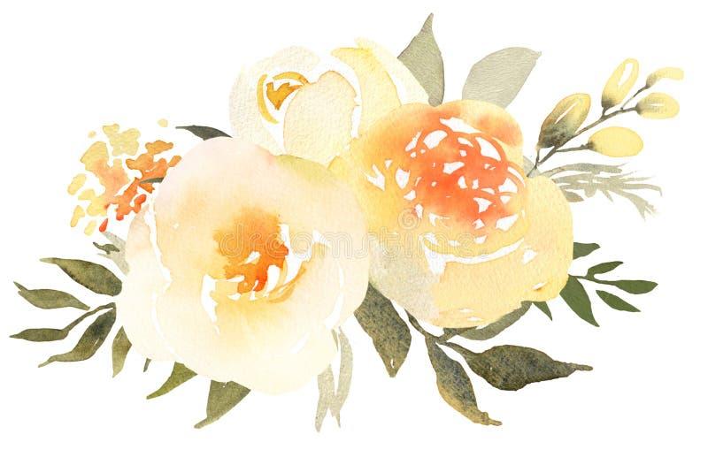 Żółte róże w kwiat akwareli bukiecie royalty ilustracja