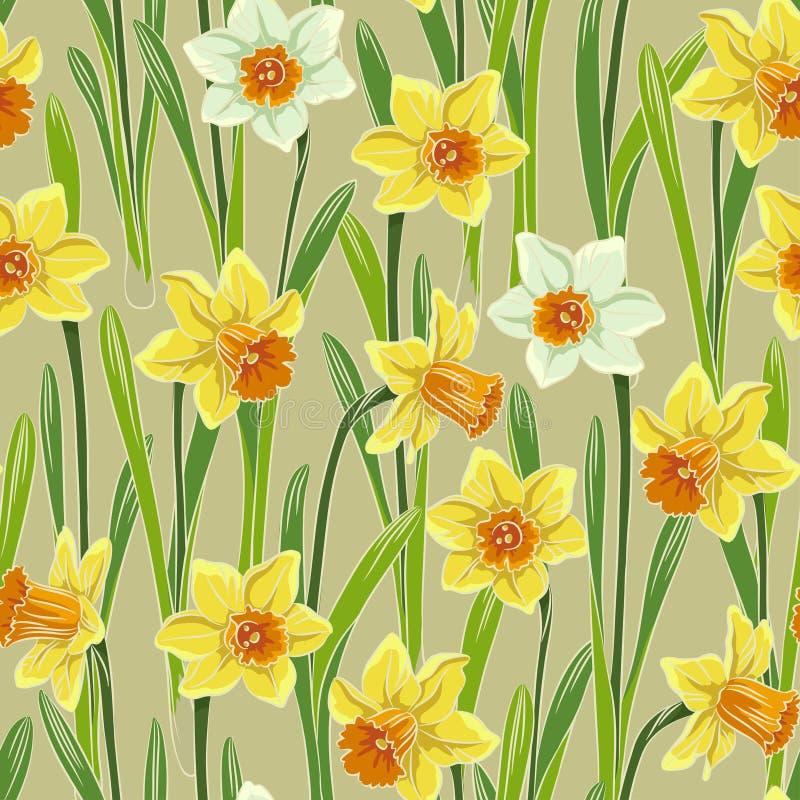 Żółtego jonquil daffodil narcyza bezszwowy wzór ilustracji