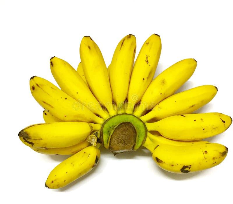 Żółty banan zdjęcia stock