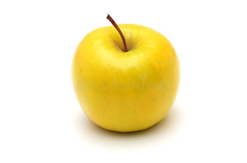 Żółty jabłko zdjęcie stock