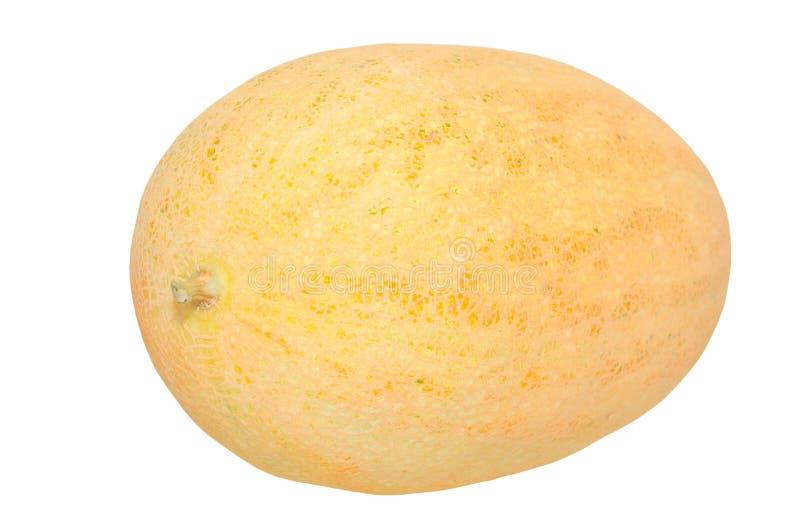Żółty melon na bielu obrazy royalty free