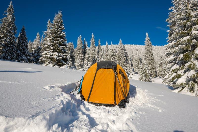 Żółty namiot i wyposażenie przy wysokogórską łąką zdjęcia royalty free
