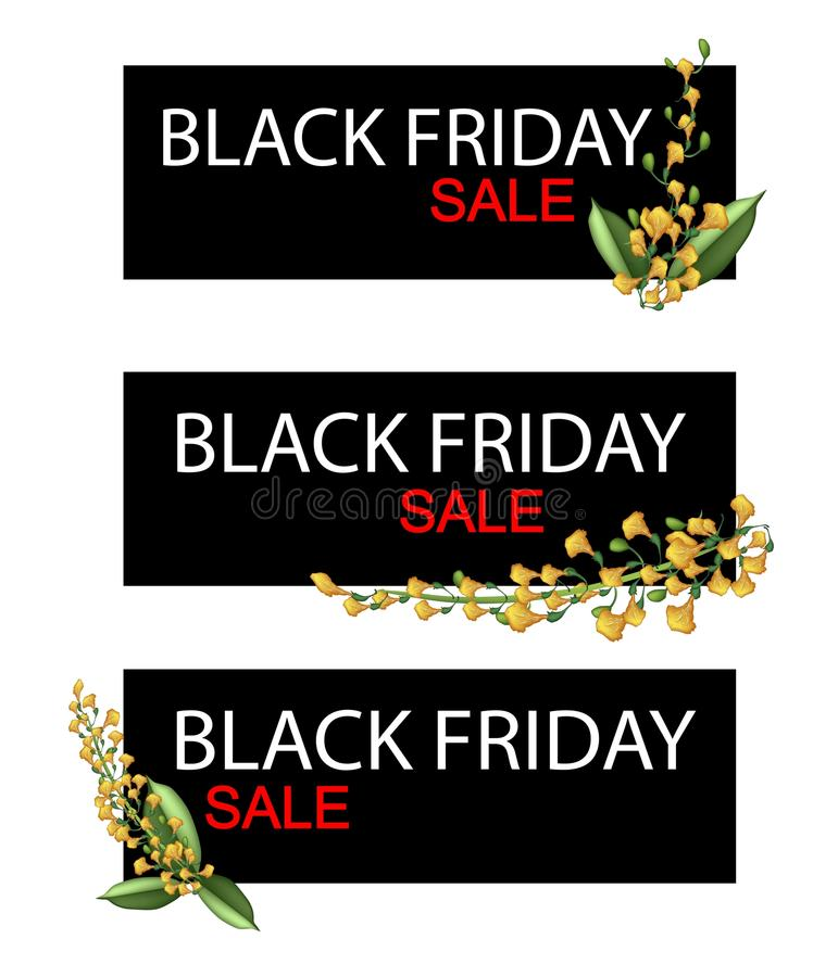 Żółty Padauk Kwitnie na Black Friday sprzedaży sztandarze ilustracja wektor