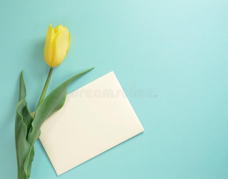 Żółty tulipan z kopertą na lekkim turkusowym tle obraz stock