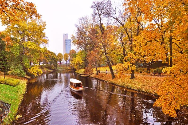 Żółty ulistnienie w jesień parku, Ryskim, Latvia zdjęcie stock