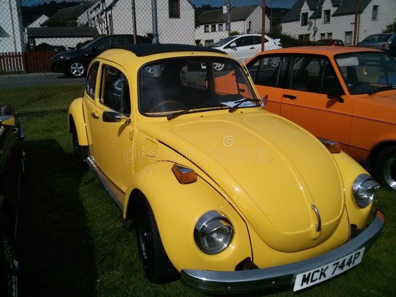 Żółty VW rocznik Volkswagen Beetle fotografia royalty free
