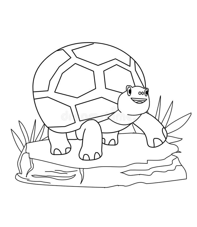 Żółw kolorystyki strona ilustracja wektor