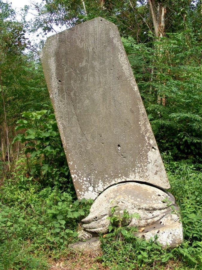 Żółw stela zdjęcie royalty free