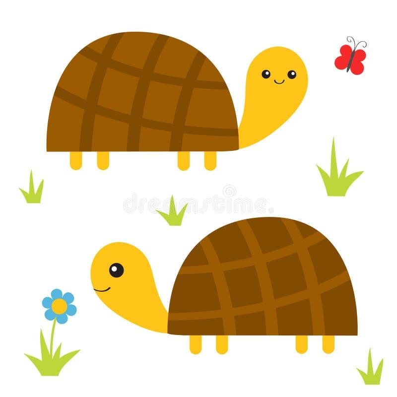 Żółwia tortoise set Ślicznego postać z kreskówki rodzinna para Motyl, stokrotka kwiat, trawa Zwierzęcia domowego zwierzęcia kolek royalty ilustracja