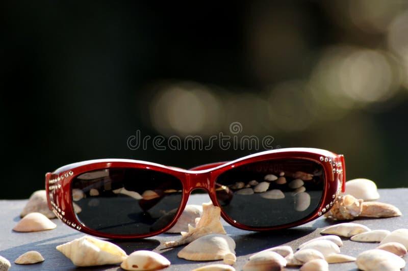 Óculos de sol na luz solar para a mulher fotos de stock