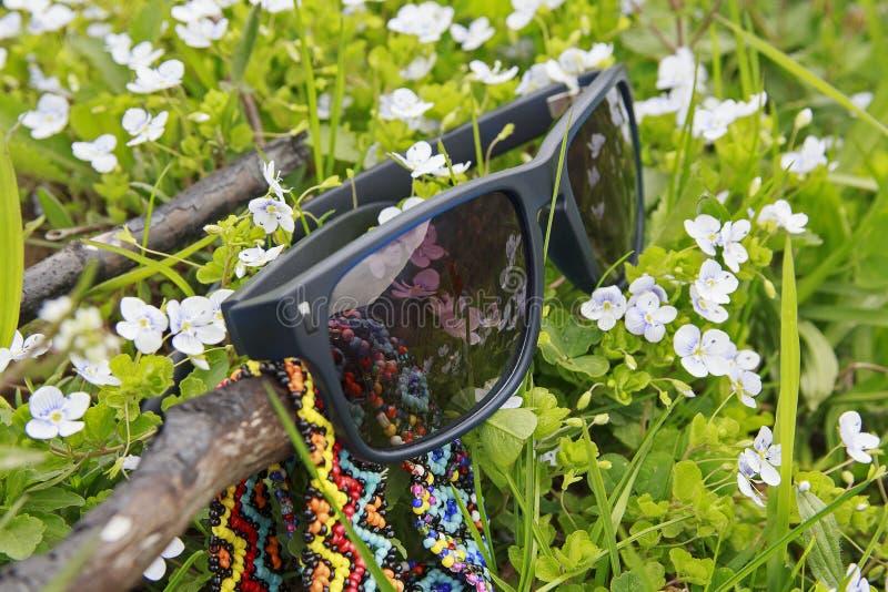 Óculos de sol que encontram-se em um prado da mola imagem de stock