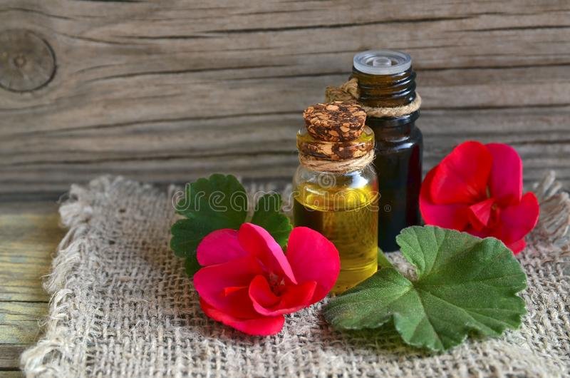 Óleo essencial do gerânio em uma garrafa de vidro com flores e folhas da planta dos gerânio na tabela de madeira imagens de stock