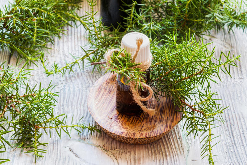Óleo essencial do zimbro em uma garrafa de vidro em uma tabela de madeira imagem de stock